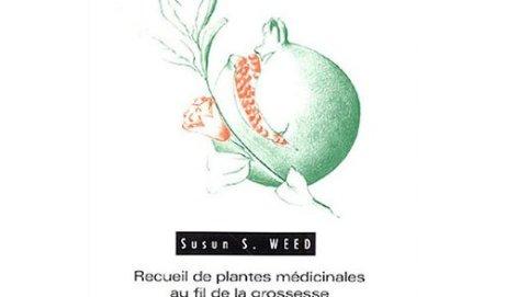 Phytothérapie & grossesse